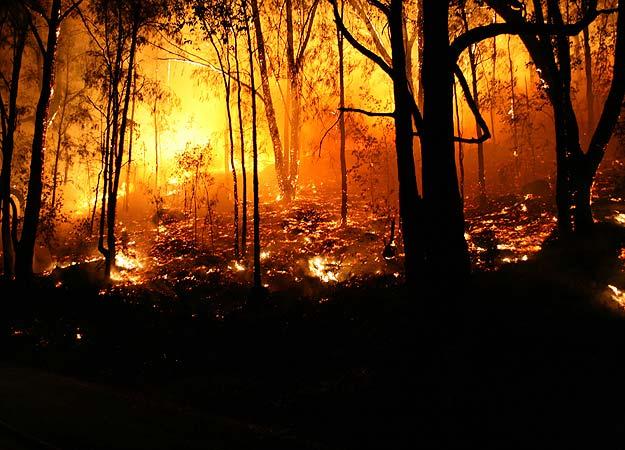 contoh naskah drama 8 orang tema bencana alam