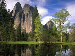 Taman Nasional Yosemite